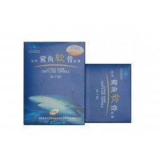 Акулий хрящ для восстановления суставной и костной тканей